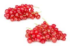 Grupp av röda vinbär på en vit bakgrund Fotografering för Bildbyråer