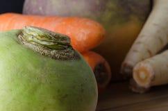 Grupp av rå rotfrukter Royaltyfria Foton