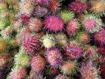Grupp av Rambutanfrukt arkivbilder