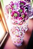 Grupp av rosa tusenskönor Royaltyfria Bilder