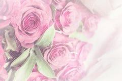 Grupp av rosor med regntextur Arkivfoton