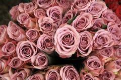 Grupp av rosor på bondemarknad Royaltyfri Foto