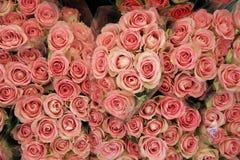 Grupp av rosor på bondemarknad Royaltyfria Foton
