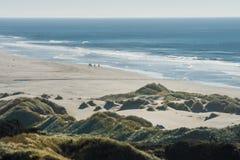 Grupp av ryttare på deras hästar och en flock av fåglar på en strand arkivbild