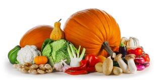 Grupp av skördgrönsaker arkivfoton
