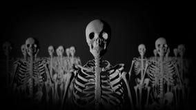 Grupp av skelett som står i mörkret som stirrar på kameran i en kuslig blick