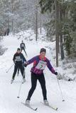 Grupp av skidåkningkvinnan för argt land i den härliga pinjeskogen Royaltyfria Bilder