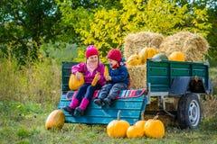Grupp av små barn som tycker om tacksägelsefestberöm på pumpalappen royaltyfri foto
