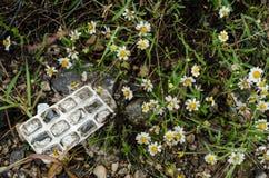 Grupp av små vita blommor med avskräde överst, begrepp av att att bry sig för miljön arkivbilder