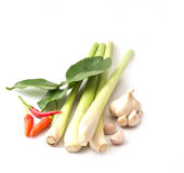 Grupp av smaktillsatsingredienser för tomyum (thailändsk mat) Arkivbilder