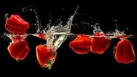 Grupp av spansk peppar som faller i vatten med färgstänk på svart bakgrund Arkivbild