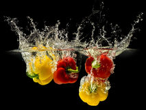 Grupp av spansk peppar som faller i vatten med färgstänk på svart bakgrund Fotografering för Bildbyråer