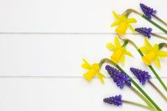 Grupp av springflowers på träyttersida Arkivbilder
