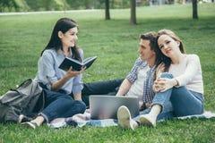 Grupp av studenter på parkera arkivbild