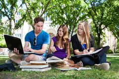 Grupp av studenter som tillsammans studerar Royaltyfri Fotografi