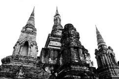 Grupp av stupa Arkivbilder