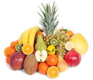 Grupp av sunda frukter Arkivfoton