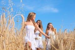Grupp av sunda unga kvinnor royaltyfria foton