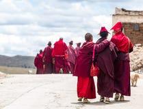 Grupp av tibetana munkar vid den Sichuan byn i Tibet Arkivbild
