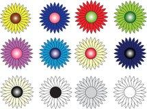 Grupp av tolv blommor av olika färger Arkivbild