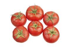 Grupp av tomater Arkivfoto