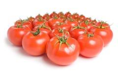 Grupp av tomatoes-14 Arkivbilder