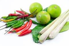Grupp av Tomyum (thailändsk mat) ingredienser Arkivbild