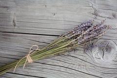 Grupp av torra lavendelblommor Arkivfoto
