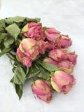 Grupp av torra rosa rosor Arkivbild