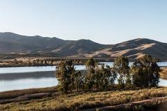 Grupp av träd med sjön och berget i Chula Vista Royaltyfri Foto