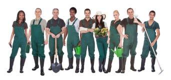 Grupp av trädgårdsmästarearbetare royaltyfri foto