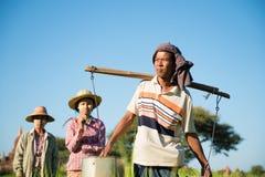 Grupp av traditionella asiatiska bönder Arkivbild