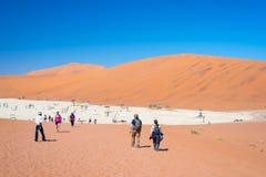 Grupp av turisten på Sossusvlei, Namib Naukluft nationalpark, loppdestination i Namibia Royaltyfri Bild