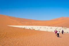 Grupp av turisten på Sossusvlei, Namib Naukluft nationalpark, loppdestination i Namibia Royaltyfri Foto