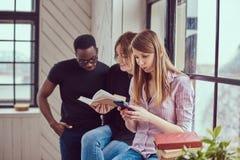 Grupp av unga blandras- studenter som arbetar med böcker och telefonen Royaltyfri Bild