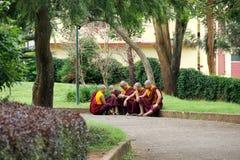 Grupp av unga buddistiska munkar som sitter i trädgård Royaltyfri Fotografi