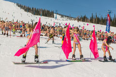 Grupp av unga lyckliga nätta kvinnor på en snowboard i färgrik bikini med flaggor Arkivfoton