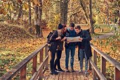 Grupp av unga vänner som fotvandrar i färgrik skog för höst, ser översikten och planerar vandring royaltyfri fotografi
