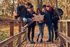 Grupp av unga vänner som fotvandrar i färgrik skog för höst, ser översikten och planerar vandring arkivbild