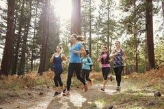 Grupp av unga vuxna kvinnor som kör i en skog, slut upp royaltyfri foto