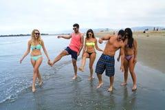 Grupp av unga vuxna människor på stranden Royaltyfri Bild