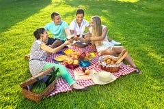 Vänner som har en picknick Royaltyfria Bilder