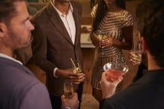 Grupp av vänner med drinkar som tycker om cocktailpartyet arkivbild
