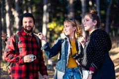 Grupp av vänner på en fotvandra tur i skog royaltyfri bild