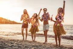Grupp av vänner på stranden fotografering för bildbyråer