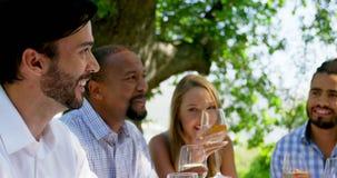 Grupp av vänner som påverkar varandra med de, medan dricka vin stock video