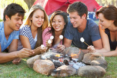 Grupp av vänner som rostar marshmallower över campa ferie för brand Arkivfoton