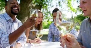 Grupp av vänner som rostar vinexponeringsglas stock video