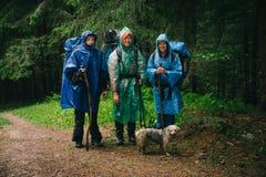 Grupp av vänner som tillsammans reser i dåligt regnigt väder Arkivbild