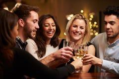 Grupp av vänner som tycker om aftondrinkar i stång royaltyfria foton